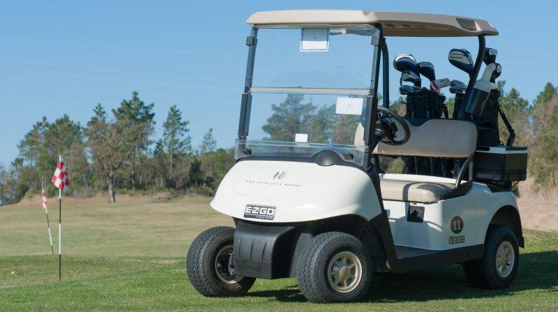 golf buggy