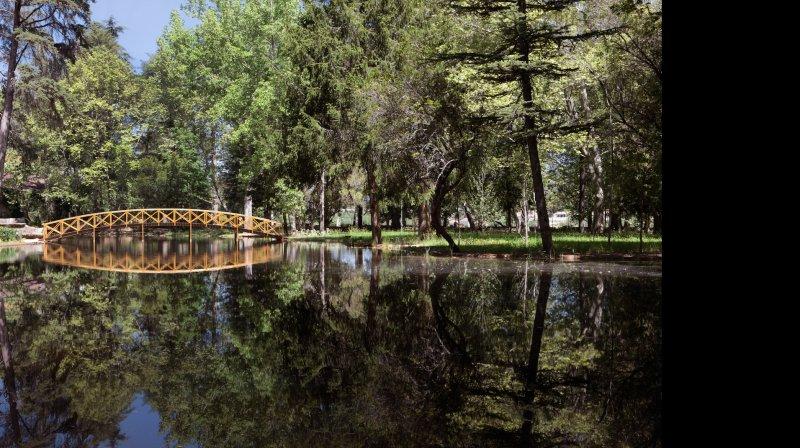 vidago lake