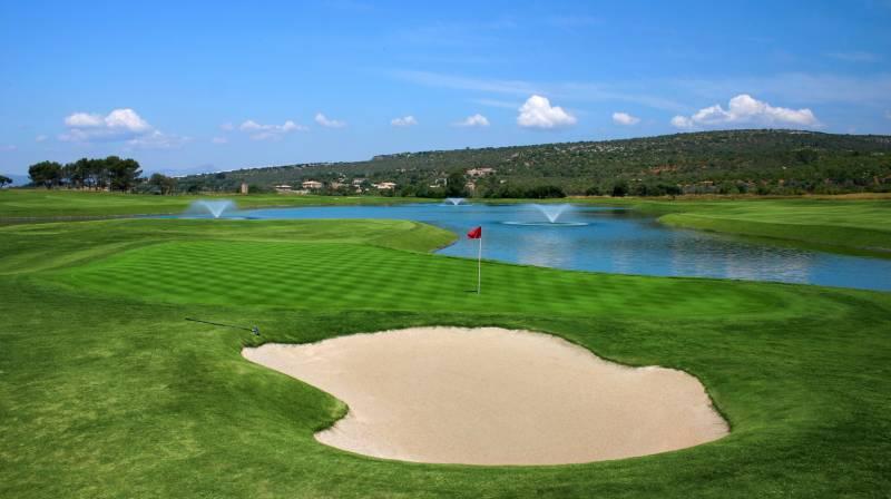 Golf Park Puntero