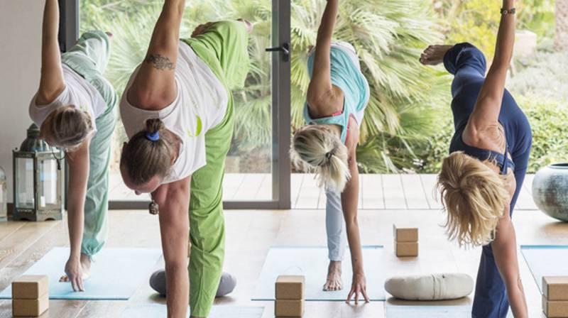 yoga terra dominicata