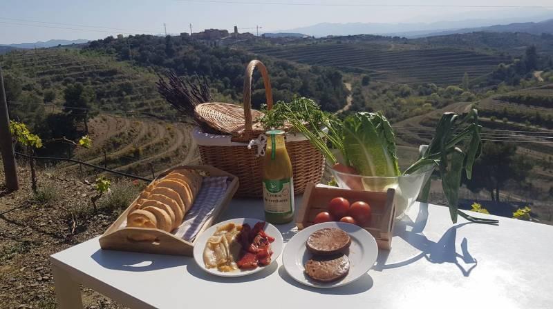 picnic tarragona