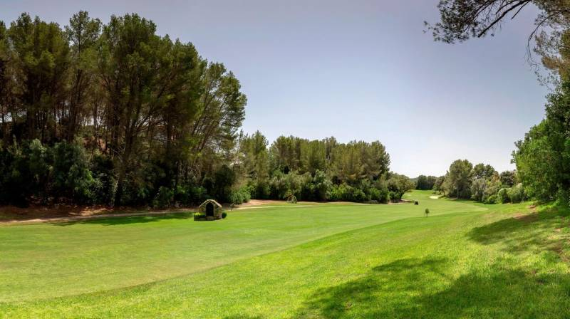 Best Golf & Relax experience in Mallorca
