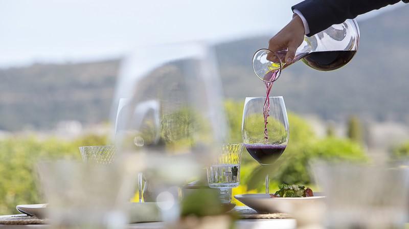 Gourmet Tasting Menu with Wine Pairing in Costa Brava