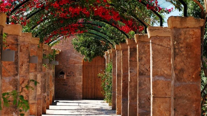 Domingo de Brunch en Mallorca