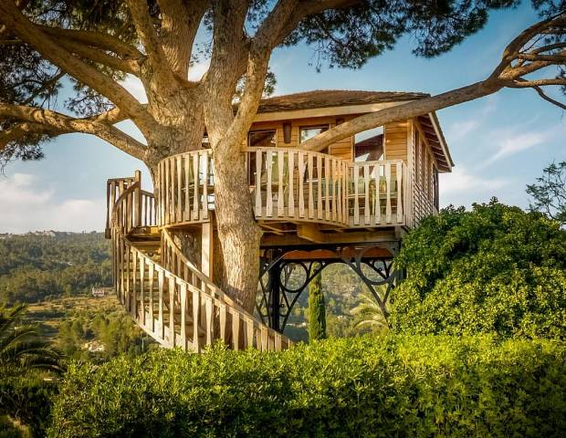 the treehouse hotel son net