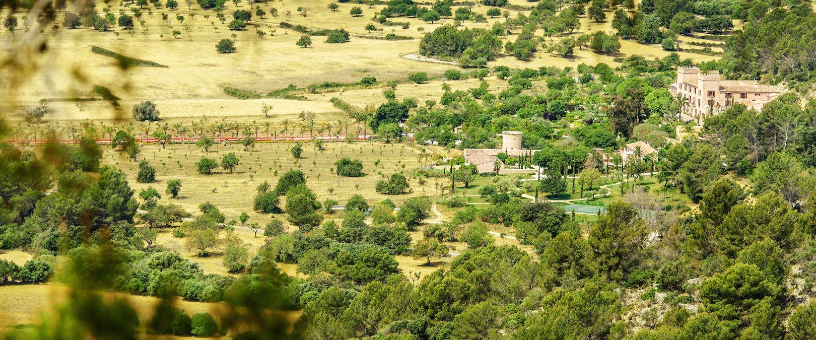 Castell Son Claret Bird View