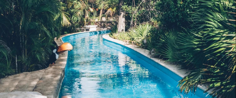 Iberostar Selection Paraíso Maya Pool