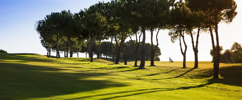Añoreta Golf Resort Golffers