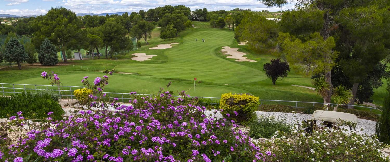 golf flores